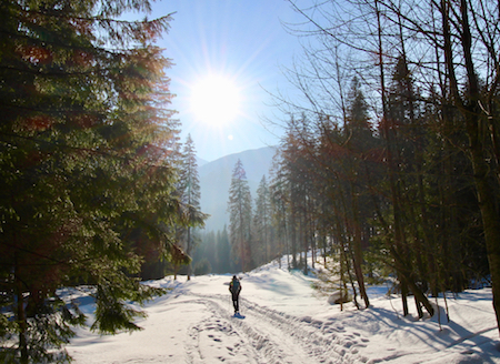 Winter Hiking Tour